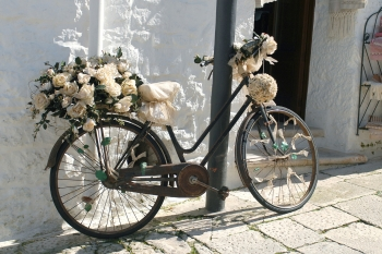 A Bike Festooned With Roses And The Pink Hula Hoop